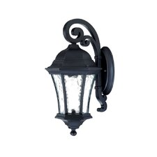 Waverly 1 Light Wall Lantern