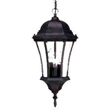 Brynmawr 3 Light Outdoor Hanging Lantern
