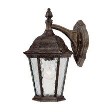 Telfair 1 Light Wall Lantern