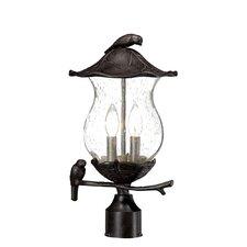 Avian 2 Light Outdoor Post Lantern