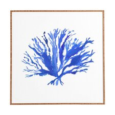 Sea Coral by Laura Trevey Framed Painting Print