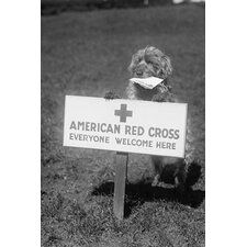'Sandy The American Red Cross Dog Welcomes Everyone' Photographic Print