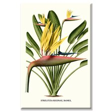 'Yellow Bird of Paradise Mandela's Gold' Graphic Art on Wrapped Canvas