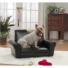 The Club Dog Chair