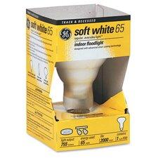 65W Incandescent Light Bulb