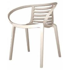 Mambo Arm Chair (Set of 4)