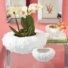 Aristotle 3 Piece Resin Urchin Planter and Vase Set