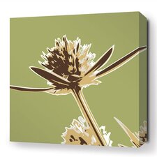 Botanicals Propeller Stretched Graphic Art on Wrapped Canvas in Grass