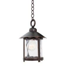 Winston 1 Light Outdoor Hanging Lantern