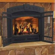 Fireplace Faceplate with Screen Doors