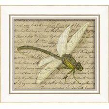 Dragonfly Framed Graphic Art