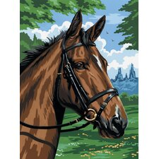 Painting by Numbers Artist Canvas Series Thoroughbred Set
