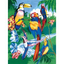 Painting by Numbers Junior Small Tropical Bird Set (Set of 3)
