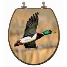 3D Upland Series Mallard Duck Flying Round Toilet Seat