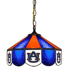 "NCAA 14"" Wide Swag Hanging Lamp"