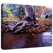 'Aravaipa Canyon Creek' by Dean Uhlinger Photographic Print Gallery-Wrapped on Canvas