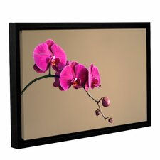 Magenta Orchid by Elena Ray Gallery-Wrapped Floater-Framed Canvas