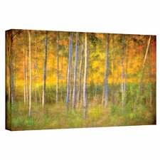 'Into the Wood' by David Liam Kyle Photographic Print on Canvas