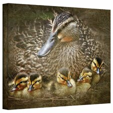 'Baby Ducks' by David Liam Kyle Graphic Art Canvas