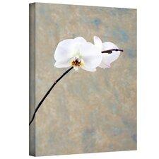 Orchid Blossom Mixed Media Print on Canvas by Elena Ray