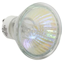 50W (3000K) Tungsten Photo Replacement Light Bulb