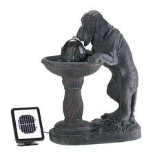 Curious Canine Resin Solar Fountain
