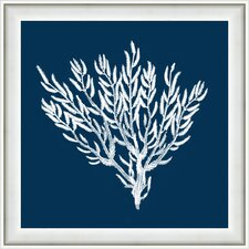 Navy Coral II Framed Graphic Art