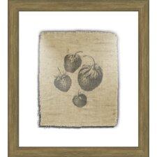Strawberries Framed Graphic Art