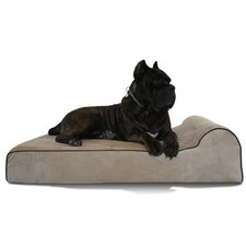 Bully Dog Bed