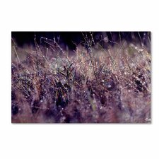 'Rain' by Beata Czyzowska Young Photographic Print on Wrapped Canvas