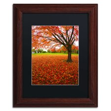 'Autumn Expressions' by CATeyes Framed Photographic Print
