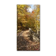 """Beautiful Autumn Hike"" by Kurt Shaffer Photographic Print on Gallery Wrapped Canvas"