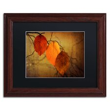 """""""Textured Leaves"""" by Philippe Sainte-Laudy Matted Framed Photographic Print"""