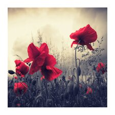 'Red For Love' by Philippe Sainte-Laudy Photographic Print on Wrapped Canvas