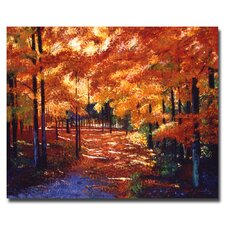 """""""Magical Forest"""" by David Lloyd Glover Painting Print on Canvas"""