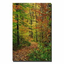 """Fall Trail"" by Kurt Shaffer Photographic Print on Canvas"