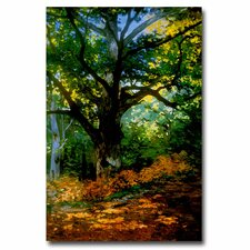 'Bodmer Oak Fontainebleau Forest' by Claude Monet Painting Print on Wrapped Canvas