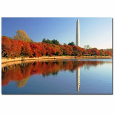 'Watch the Leaves Turn' by CATeyes Photographic Print on Canvas