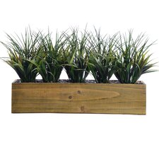 Plastic Grass in Retangular Wooden Planter