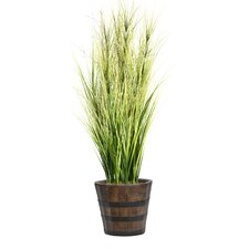 Onion Grass with Twigs in Round Fiberstone Planter