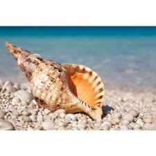 Outdoor Speaker of the Ocean Photographic Print on Canvas