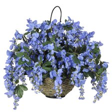 Wisteria Hanging Plant in Basket