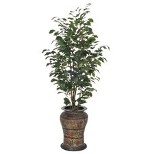 Artificial Ficus Tree in Decorative Vase II