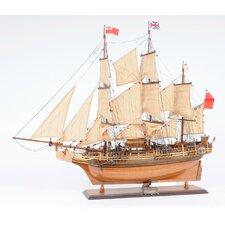HMS Bounty New Model Boat
