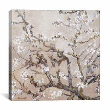 'Almond Branches' by Vincent Van Gogh Painting Print on Wrapped Canvas