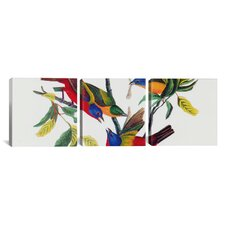 """""""Painted Bunting"""" by John James Audubon 3 Piece Painting Print on Wrapped Canvas Set"""