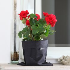 Fiorina Novelty Pot Planter (Set of 2)