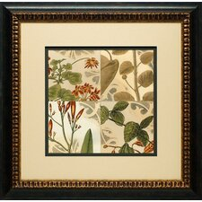 Botanical Quadrant I by Vision Studio Framed Graphic Art