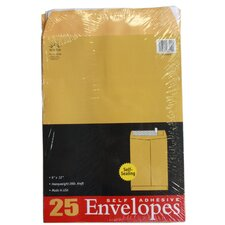 25 Count Kraft Envelopes (Set of 6)