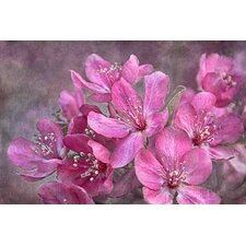 Crabapple Floral by Theo Painting Print on Wrapped Canvas